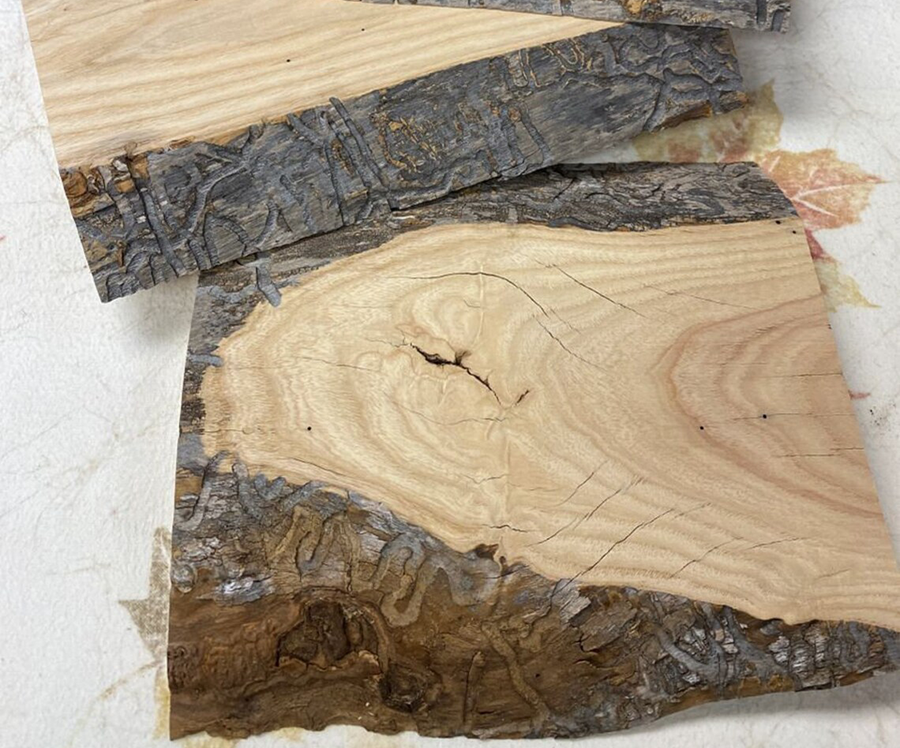 These are some lovely live edge pieces of ash wood.