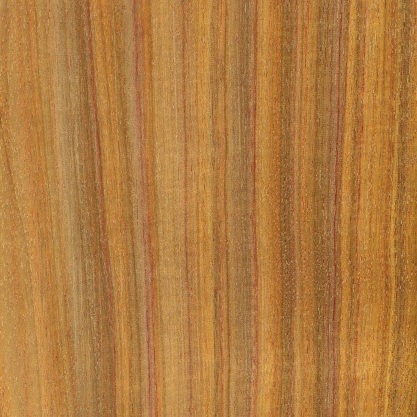 Canarywood is a practically rainbow, striated wood.  The colors tend to mellow with age, but that makes this type of wood no less beautiful.