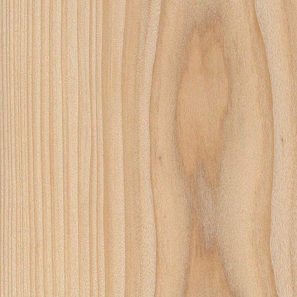 A good view of the wood grain on a cypress plank, a good type of wood for woodworking.