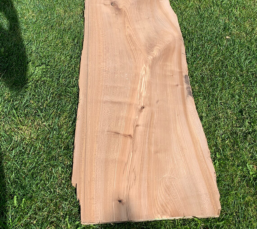 Elmwood is a very common type of wood, and this picture shows how it can look.