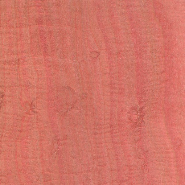 Pink ivory is one of the more naturally occurring brilliantly colored woods, as you can see here from this picture, it can be a bright pink!